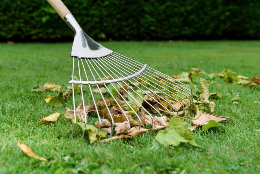 Ideje az ültetésnek… Fűmag telepítés és felülvetés ősszel