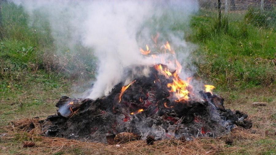Tudod mennyi kárt okozol az avarégetéssel?