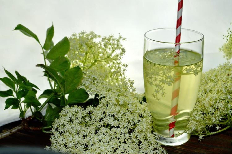 Bodzalimonádé - csodás az illata, és egészséges is!