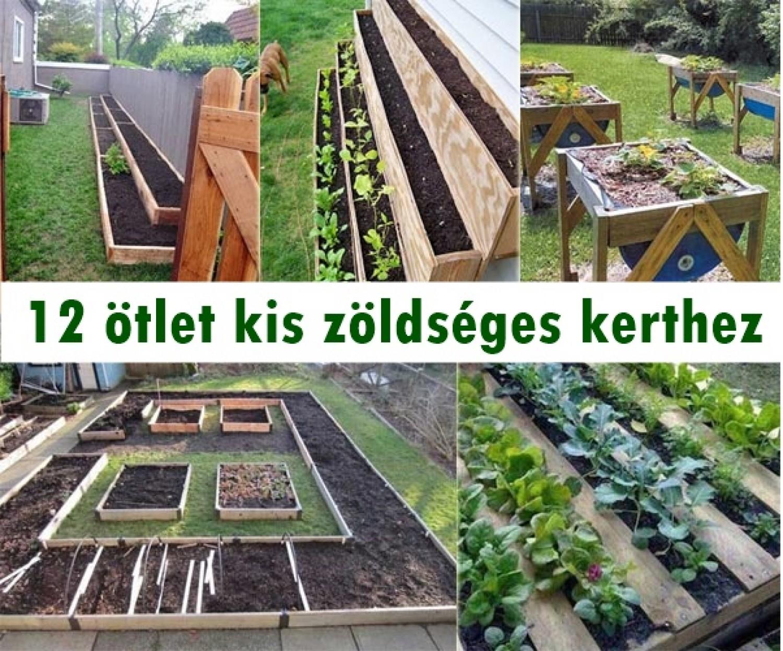 12 ötlet kis zöldséges kerthez