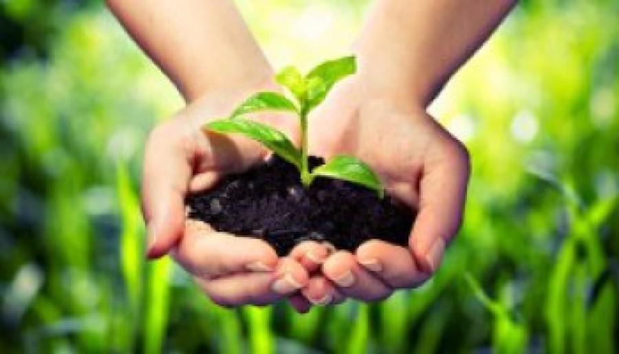 A kertészkedés nem ördöngösség, és működik is!