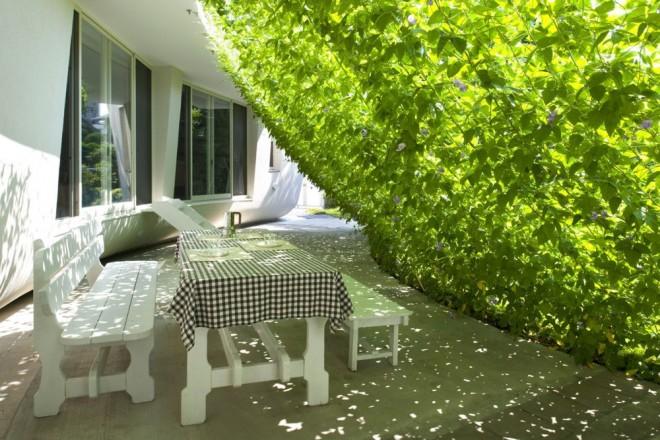 20 nagyszerű térhatároló kertbe, teraszra
