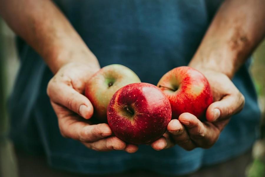 Tudtad, hogy az alma a legszennyezettebb, az ananász pedig a legtisztább gyümölcs?