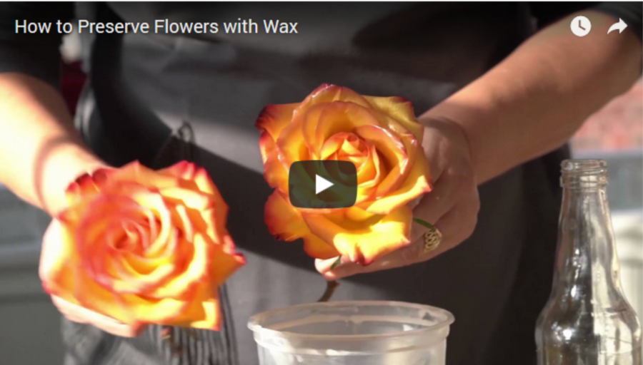 Ezzel a remek ötlettel hosszú időre megőrízhetjük a vágott virágok szépségét!