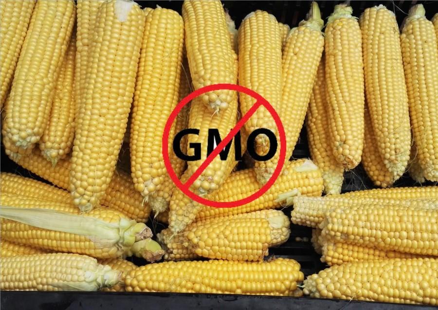 Bioban TILOS a GMO