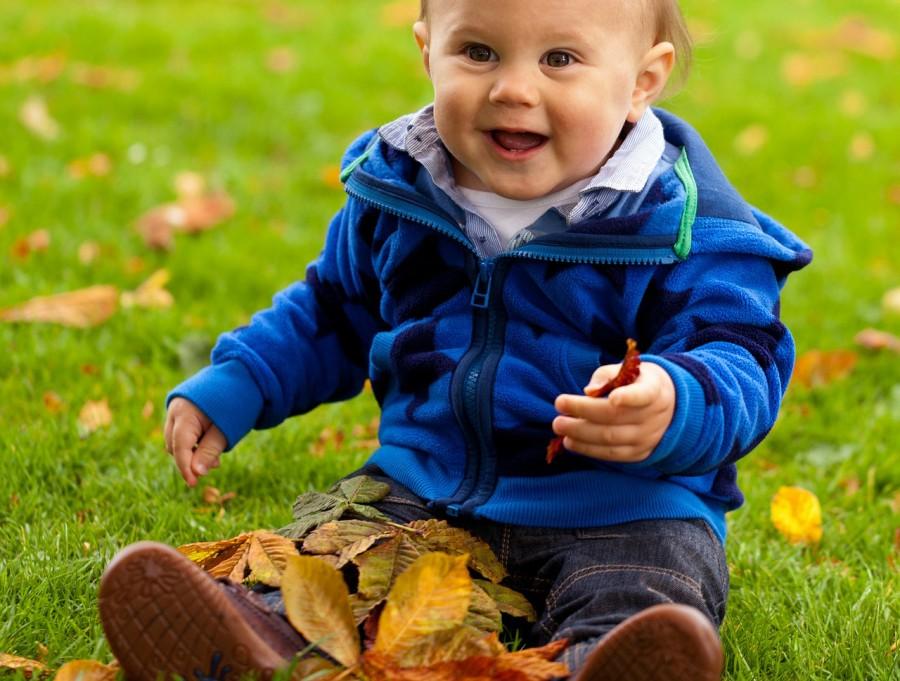 Gyepápolás ősszel