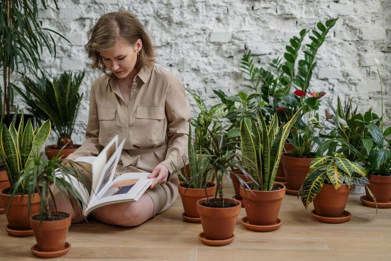 Növényápolás szokatlan módszerekkel