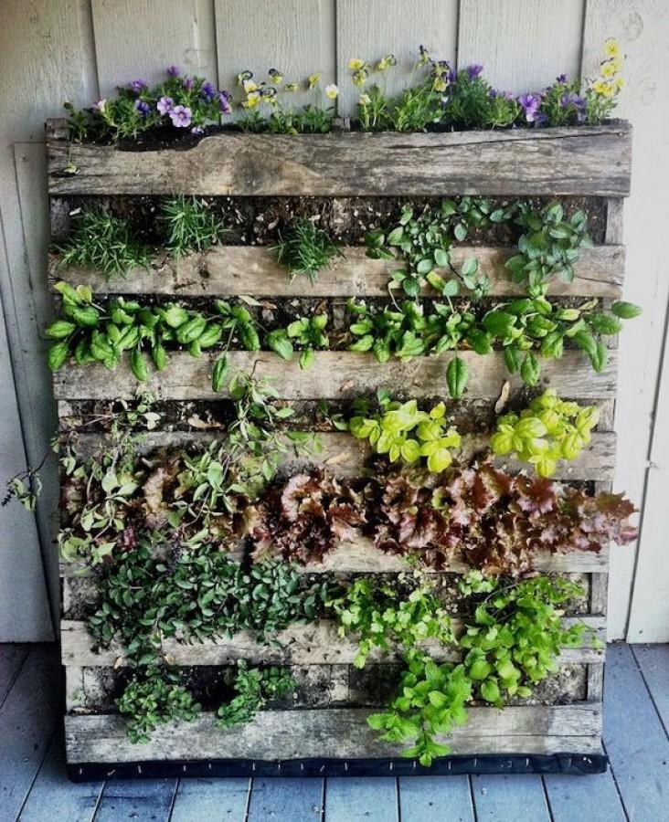 Zöld falak, vertikális kertek